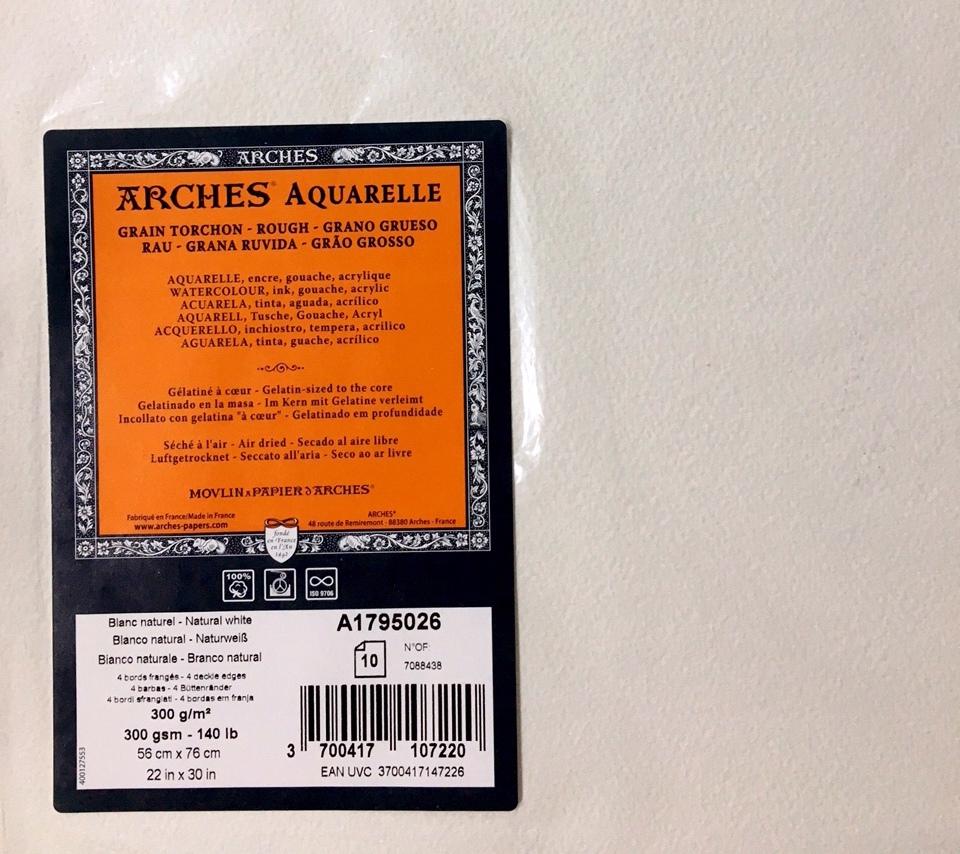 ARCHES SULU BOYA KAĞIDI 300G 56X76 10 LU PK  ROUGH