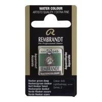 REMBRANDT SULU BOYA TABLET HOOKER GREEN DEEP 645