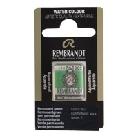 REMBRANDT SULU BOYA TABLET PERMANENT GREEN 662